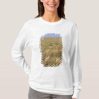 Wiesen-Grasland östlich Sidney, Nebraska T-Shirt
