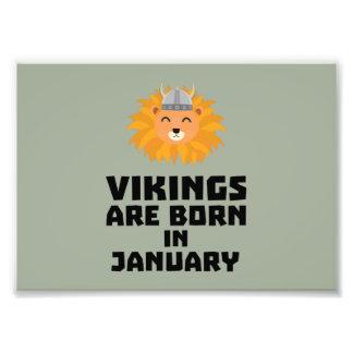 Wikinger sind geborene im Januar Zva42 Fotodruck