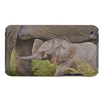 Wild lebende Tiere Afrikas, Kenia, Babyelefant Barely There iPod Case