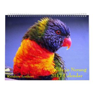 Wild lebende Tiere in Nerang 2017 Kalender Kalender