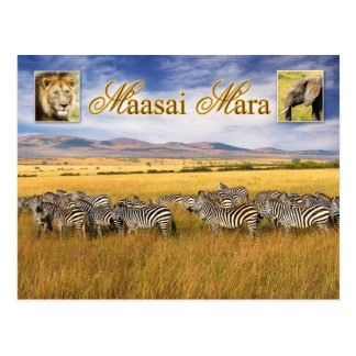 Wild lebende Tiere von Maasai Mara in Kenia Postkarte