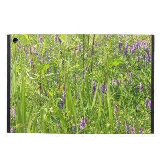 Wildblume - büschelige Wicke