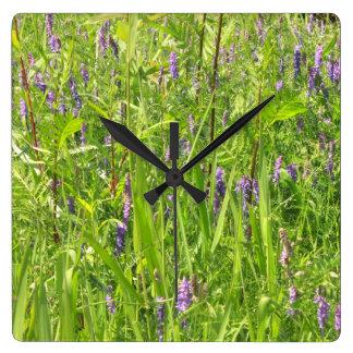 Wildblume - büschelige Wicke Quadratische Wanduhr