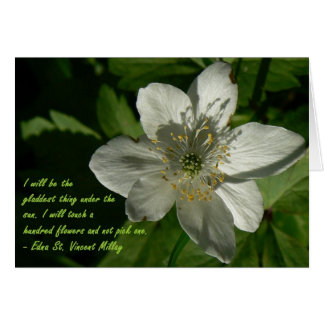 Wildblume - Edna St. Vincent Mallay Grußkarte