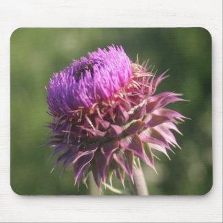 Wildblume-wilde Distel-Blume lila Oklahoma Mousepad