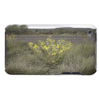 Wildblumen auf der Seite der Straße, Landstraße 90 iPod Touch Hüllen