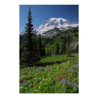 Wildblumen beim Mount Rainier Poster