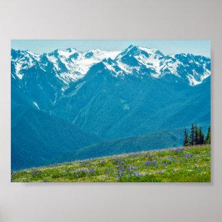 Wildblumen und Berge Poster