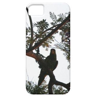 Wilde Amazonas-Papageien-Vogel-Tier-wild lebende Hülle Fürs iPhone 5