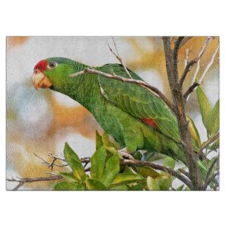 Wilde Amazonas-Papageien-Vogel-Tier-wild lebende Schneidebrett