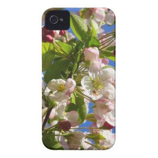 Wilde Apfelbaumblüten iPhone 4 Case-Mate Hülle