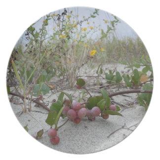 Wilde Beeren auf dem Strand Teller