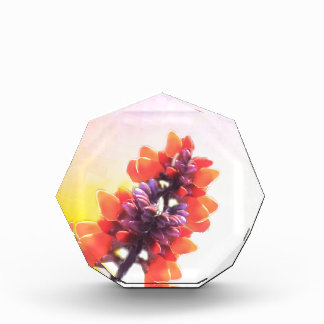Wilde Blumen Acryl Auszeichnung
