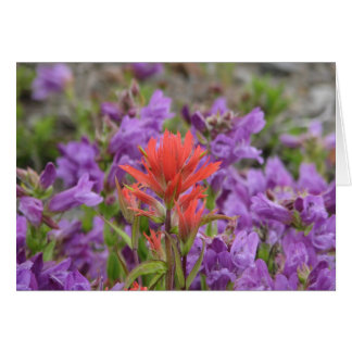Wilde Blumen Karte