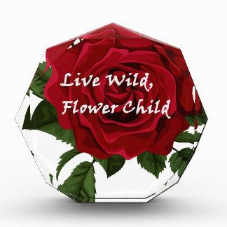Wilde Blumen-KinderlebhaftRose Acryl Auszeichnung