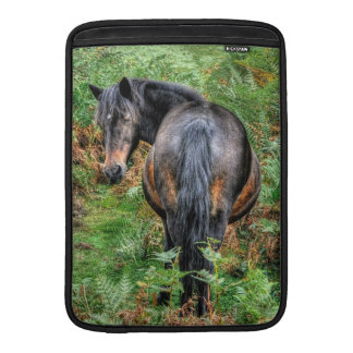 Wilde Bucht-neues Waldpony - wildes Pferd - MacBook Sleeve