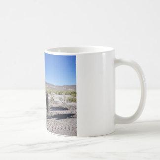 Wilde Burros in Nevada Kaffeetasse