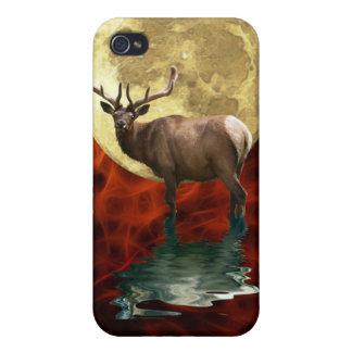 Wilde Elche, Wapiti, Rotwild-wild lebende Tiere iPhone 4 Schutzhüllen