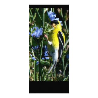 Wilde Goldfinch-Fink-Vogel-Tier-Tier-Blumen Werbekarte