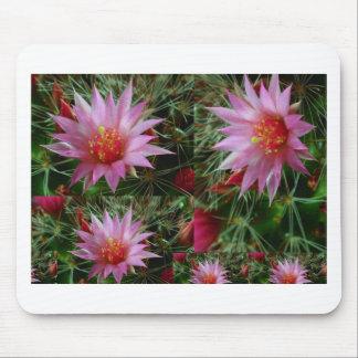 Wilde KAKTUS Blumen-Show:  Exotische rosa Grüße Mauspads