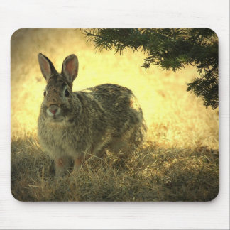 Wilde Kaninchen-Mausunterlage Mousepad