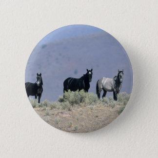 Wilde Mustang-Pferde in der Wüste 3 Runder Button 5,7 Cm