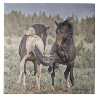Wilde Mustangs Fliese