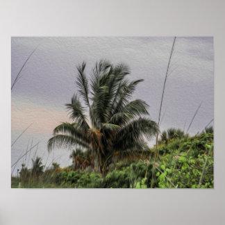 Wilde Palme, die im Wind-Plakat durchbrennt Poster