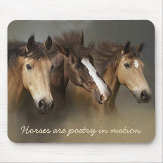 Wilde Pferde drei Mousepad