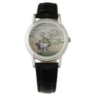 Wilde Pferde Nationalparks Theodore Roosevelts Uhr