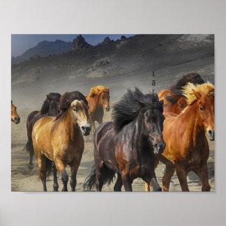 Wilde Pferde Poster
