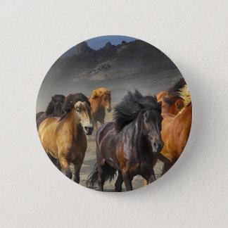 Wilde Pferde Runder Button 5,1 Cm
