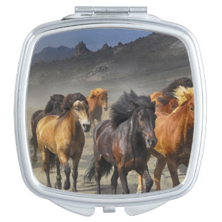 Wilde Pferde Taschenspiegel