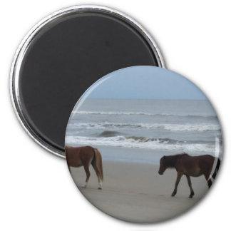 Wilde Pferdeäußere Banken Runder Magnet 5,1 Cm