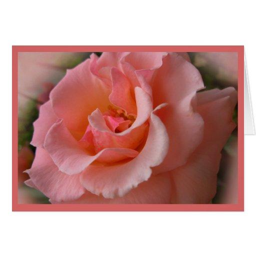 Wilde Rose kardiert Blumen-kundenspezifische Gruß- Grußkarten