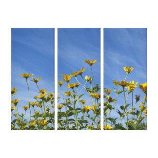Wilde Sonnenblumen und blauer Himmel Leinwanddruck