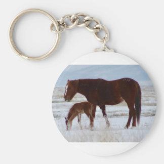 Wilde Stute mit Baby in Utah-Wüste im Winter Schlüsselanhänger