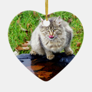 Wilde Tabbykatze mit einem piercing Blick Keramik Herz-Ornament