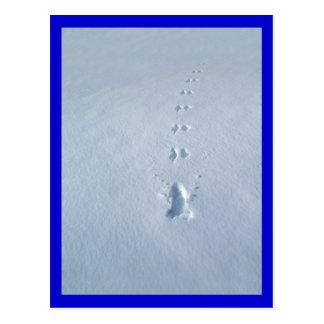 Wilde Vogel-Abdrücke im Schnee Postkarte
