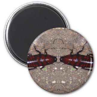 Wilde Zartheits-Küche - Wissenschaft, Insekten der Runder Magnet 5,1 Cm
