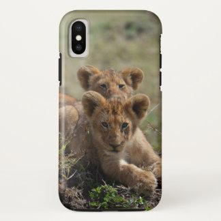 Wilder afrikanischer Löwe CUB iPhone X Hülle