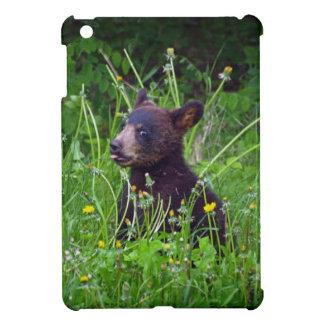Wilder Bärn-Tier-Fotografie-Entwurf iPad Mini Hülle