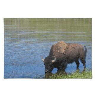 Wilder Büffel Yellowstone im Teich Tischset