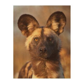 Wilder Hundeporträt Holzwanddeko