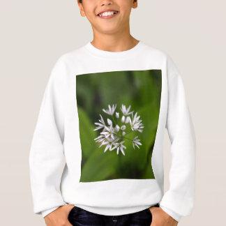 Wilder Knoblauch oder ramsons Lauch ursinum Sweatshirt