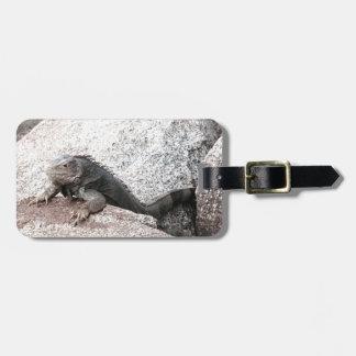 Wilder Leguan Kofferanhänger