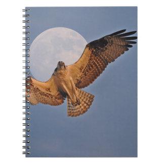Wilder Osprey u. Supermond-Foto-Entwurf Notizblock