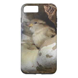 Wilder Vogel, der Abdeckung von den kalten Winden iPhone 8 Plus/7 Plus Hülle