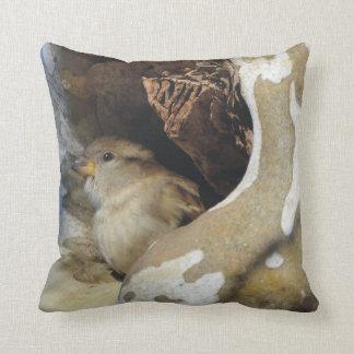 Wilder Vogel, der Abdeckung von den kalten Winden Kissen