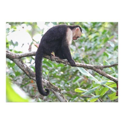 Wildes Affe-Bild Einladungskarte